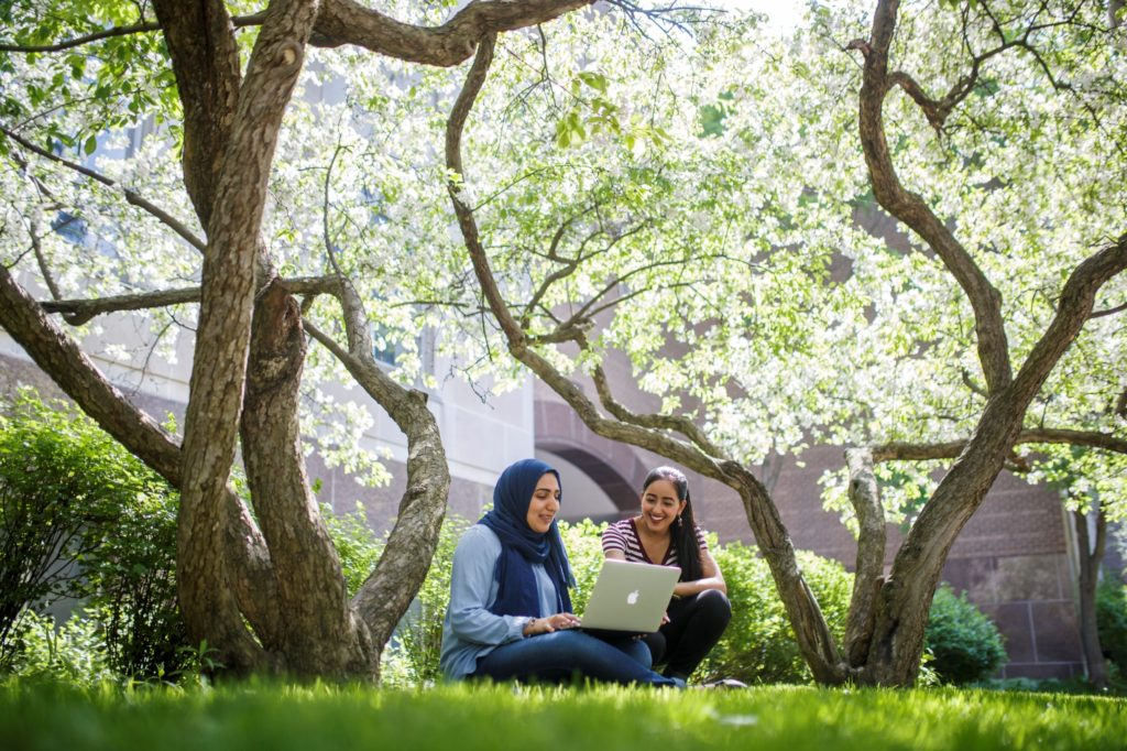 Two students sitting on the grass under trees looking at a laptop
